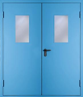 Двупольная противопожарная дверь со стеклом EI 60 (RAL 5012)
