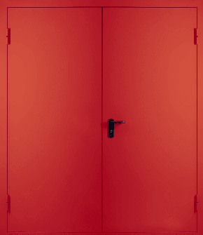 Двупольная глухая противопожарная дверь EI 30 (RAL 3020)