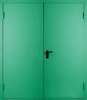Двупольная глухая противопожарная дверь EI 60 (RAL 6024)