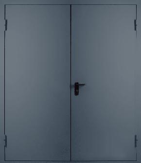 Двупольная глухая противопожарная дверь EI 60 (RAL 7043)
