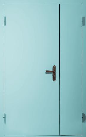 Полуторная глухая техническая дверь (RAL 6027)
